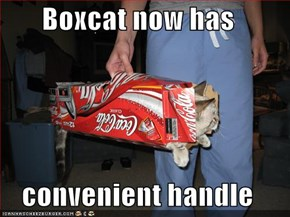 Boxcat now has  convenient handle