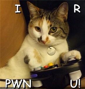 I           R   PWN        U!