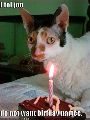 I tol joo  do not want birfday partee.