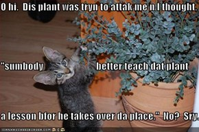 "O hi.  Dis plant was tryn to attak me n I thought,  ""sumbody                           better teach dat plant a lesson bfor he takes over da place.""  No?  Sry."