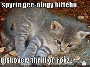 'spyrin gee-olugy kittehn  diskoverz thrill of  rokz