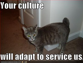 Your culture   will adapt to service us.