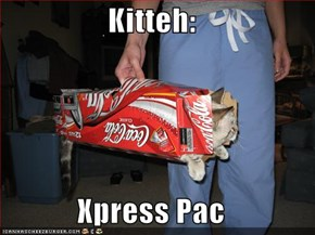 Kitteh:  Xpress Pac
