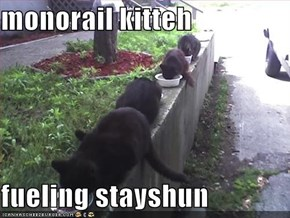 monorail kitteh  fueling stayshun