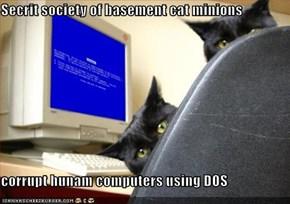 Secrit society of basement cat minions  corrupt hunam computers using DOS