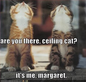 are you there, ceiling cat? it's me, margaret.