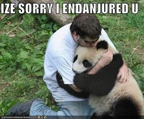 IZE SORRY I ENDANJURED U