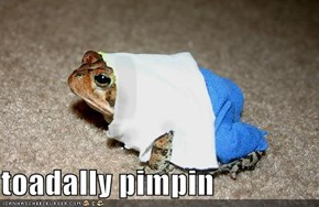 toadally pimpin