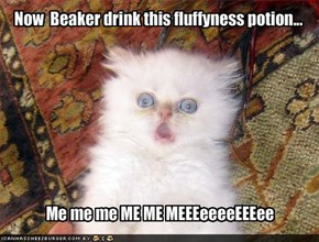 Now  Beaker drink this fluffyness potion...