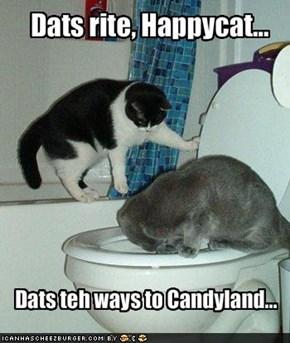 Dats rite, Happycat...