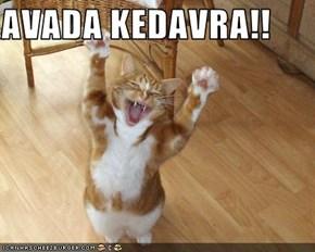 AVADA KEDAVRA!!