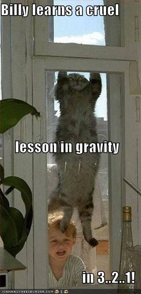 Billy learns a cruel  lesson in gravity in 3..2..1!
