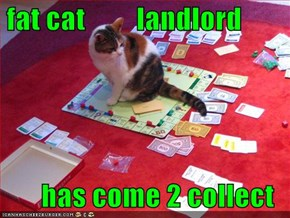 fat cat         landlord  has come 2 collect