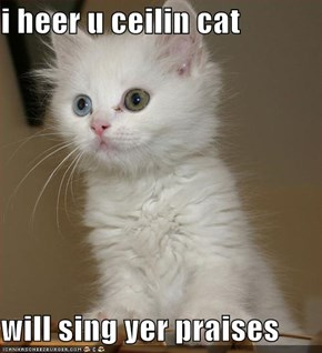 i heer u ceilin cat  will sing yer praises