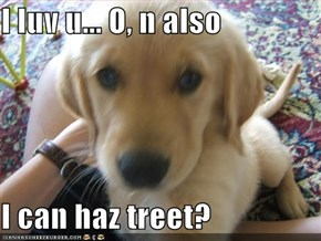I luv u... O, n also  I can haz treet?