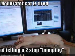 "Moderator cat iz tired  of telling u 2 stop ""bumping"""
