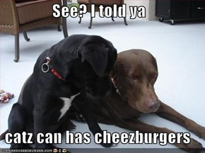 See? I told ya  catz can has cheezburgers