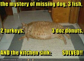 the mystery of missing dog, 3 fish, 2 turkeys,                         3 doz donuts,         AND the kitchen sink:          SOLVED!!