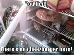 You lied!  There's no cheezburger here!
