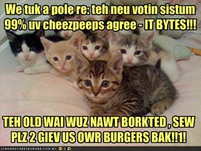 We tuk a pole re: teh neu votin sistum
