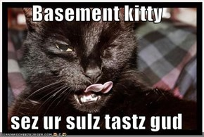 Basement kitty  sez ur sulz tastz gud