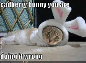 cadberry bunny you are   doing it wrong