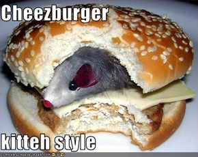 Cheezburger  kitteh style