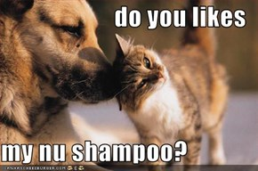 do you likes  my nu shampoo?