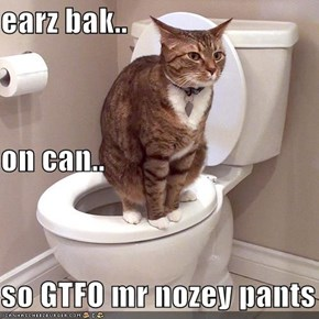 earz bak.. on can.. so GTFO mr nozey pants
