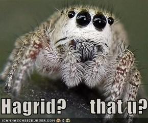 Hagrid?      that u?