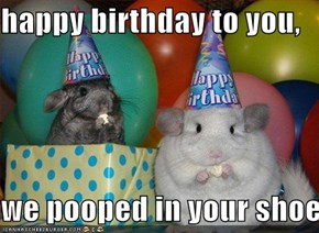 happy birthday to you,  we pooped in your shoe