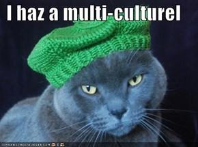 I haz a multi-culturel