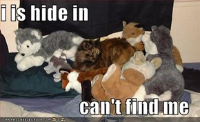 i is hide in                      can't find me
