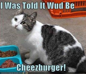 I Was Told It Wud Be  Cheezburger!