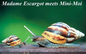 Madame Escargot meets Mini-Moi