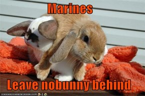 Marines  Leave nobunny behind