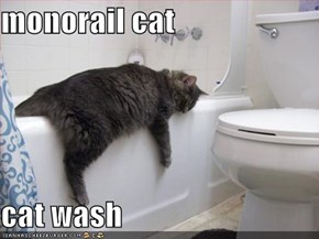 monorail cat  cat wash