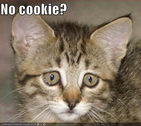 No cookie?
