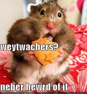 weytwachers? neber hewrd of it