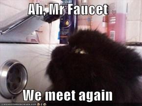 Ah, Mr Faucet  We meet again