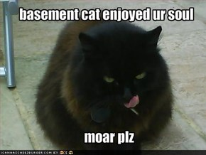 basement cat enjoyed ur soul