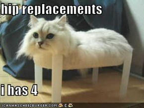 hip replacements  i has 4