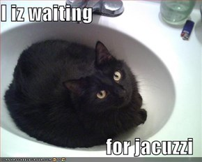 I iz waiting  for jacuzzi