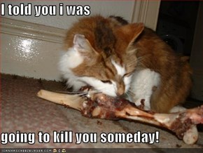 I told you i was  going to kill you someday!