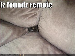 iz foundz remote