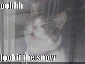 oohhh  lookit the snow