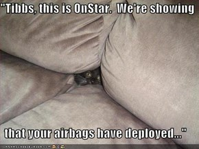 """Tibbs, this is OnStar.  We're showing  that your airbags have deployed..."""