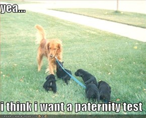 yea...  i think i want a paternity test