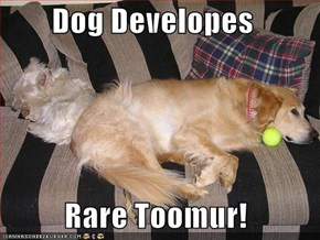 Dog Developes   Rare Toomur!
