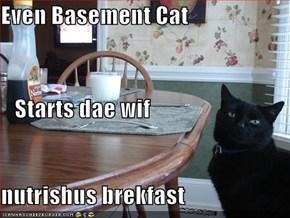 Even Basement Cat    Starts dae wif  nutrishus brekfast
